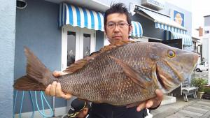 昨夜(6/18の夜🌃✨)神子元島の夜釣り釣果速報❕❕