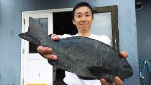 昨夜(6/30の夜🌃✨)神子元島の夜釣り釣果速報❕❕