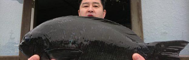 4/12(金)神子元島 釣果情報です🎵✋😊❤️